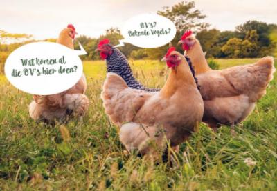 Dit was Dag van de landbouw 2020: blik mee terug!